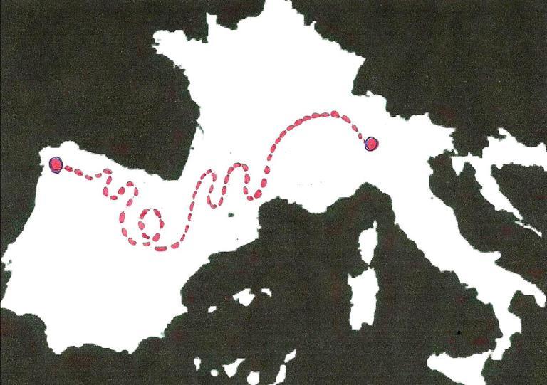 mappa pennuto